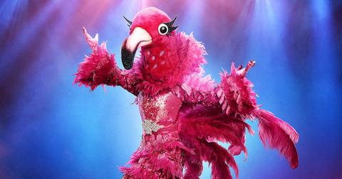 the-masked-singer-flamingo-1576018649810.jpg