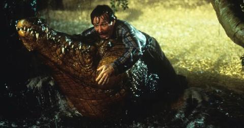jumanji-crocodile-robin-williams-1576182315209.jpg