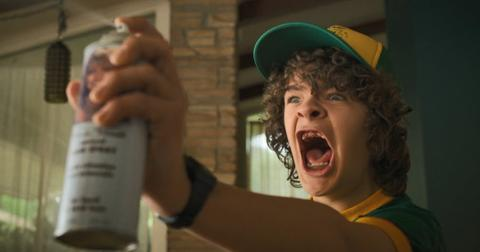 stranger-things-dustin2-1562343355990.jpg