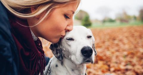 5-kissing-dogs-1563468603272.jpg