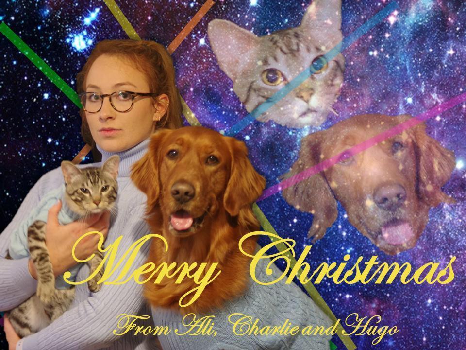 real-family-christmas-cards-7-1544817120230.jpg