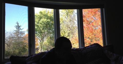 four-seasons-window-1560262857439.jpg