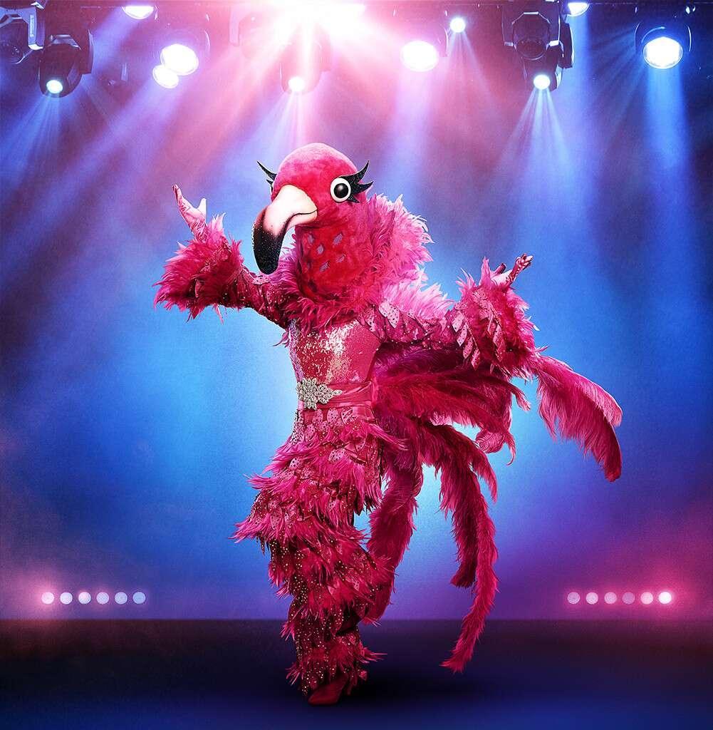masked-singer-flamingo-1569442311401.jpg