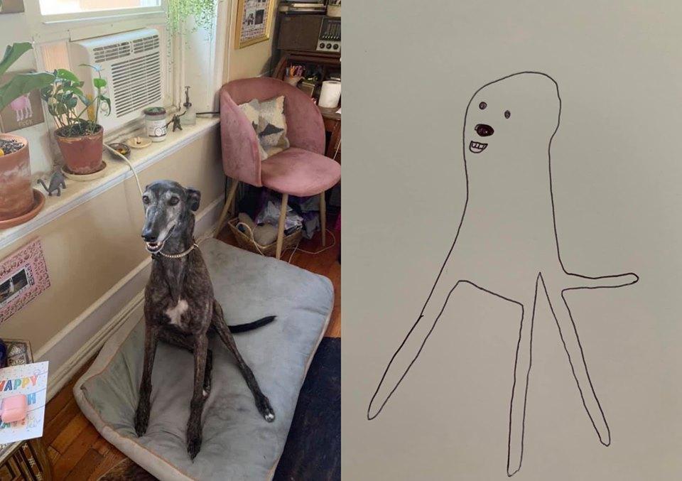 5-flat-dog-doodles-1567790596110.jpg