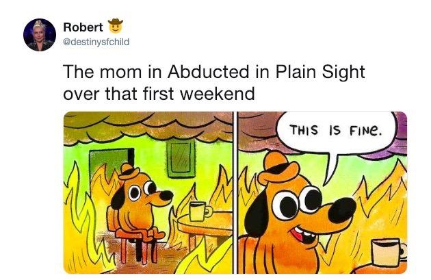abducted-in-plain-sight-meme-7-1549992160460-1549992162219.jpg