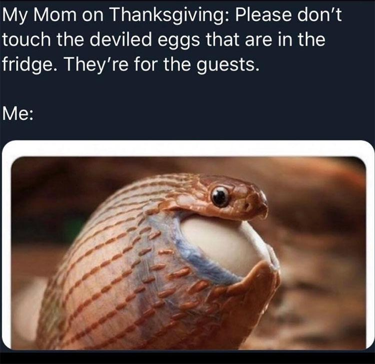 thanskgiving-meme-14-1542392589576-1542392591451.jpg