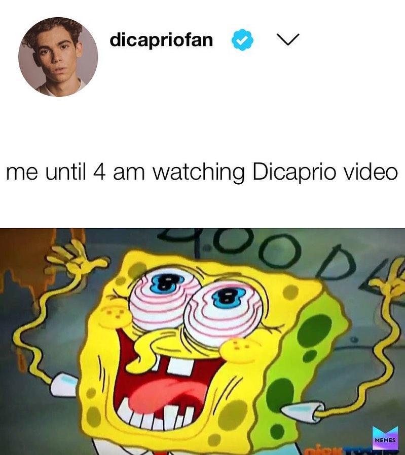leonardo-dicaprio-memes-13-1573246253842.jpg