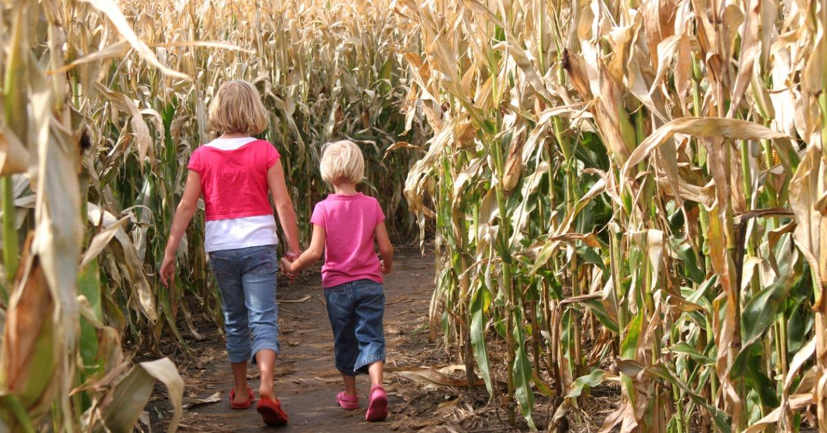 sisters-and-a-corn-maze-picture-id140473149-1540494947140-1540494948978.jpg