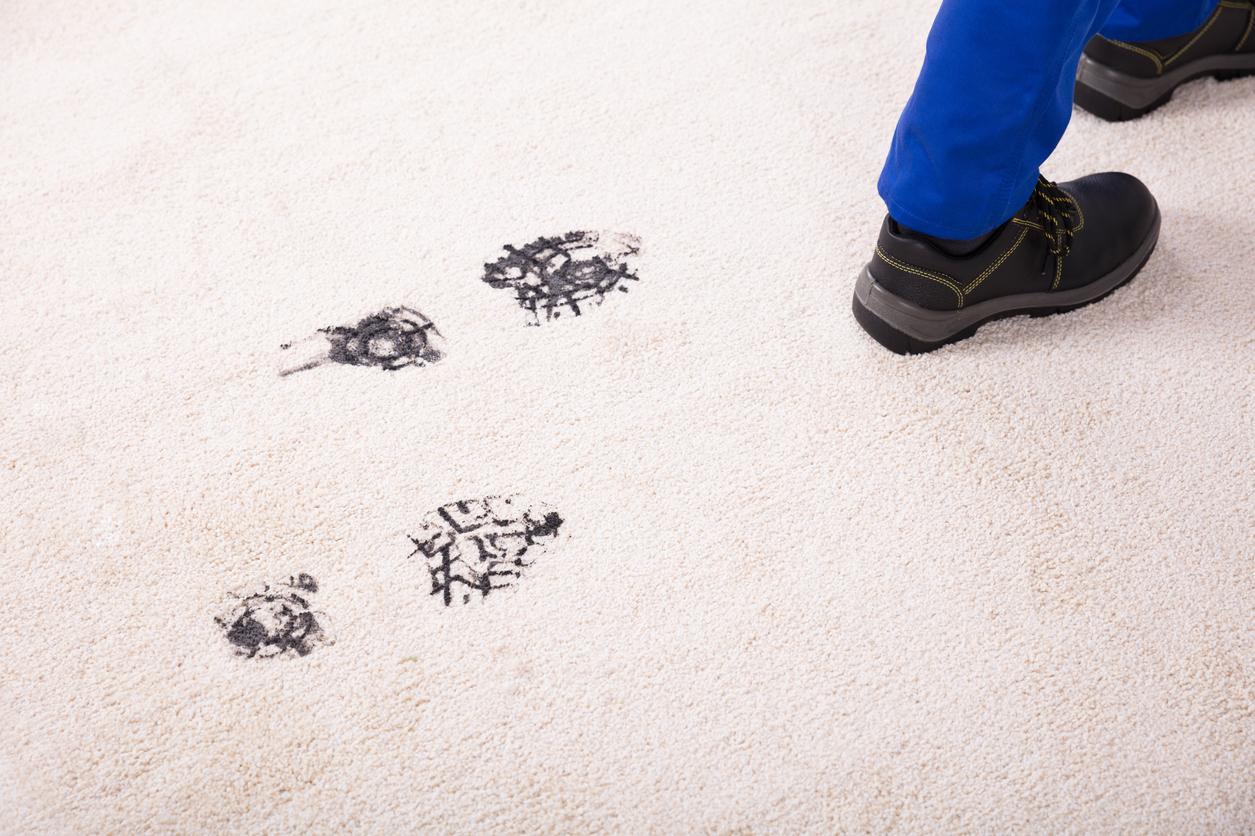 footprint-1539016143366-1539016145384.jpg