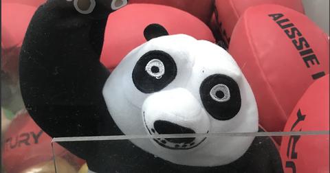 13-strung-out-panda-1557502441294.jpg