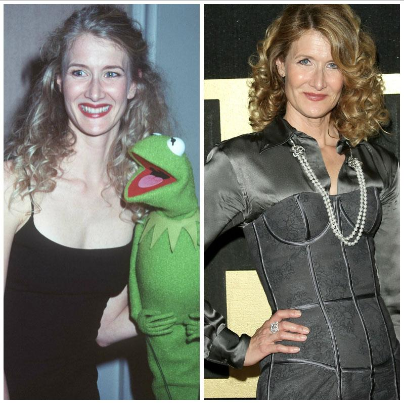 fault-in-our-stars-cast-laura-dern-1542140240776-1542140242976.jpg