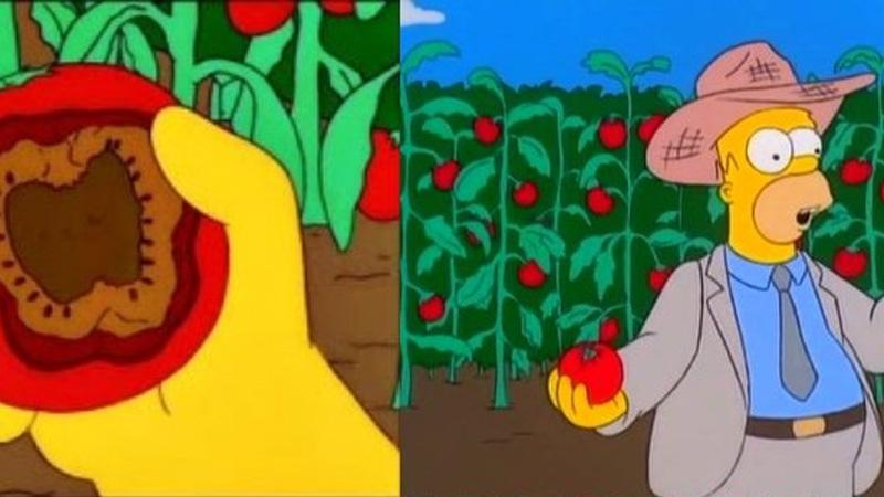 simpsons-mutated-tomatoes-1519761689059.jpg
