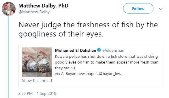 fishgooglyeyes3-1536168493755-1536168495319.JPG