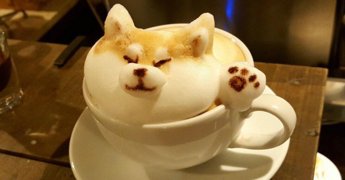 cover-latte-1506948215622-1506948219097.jpg