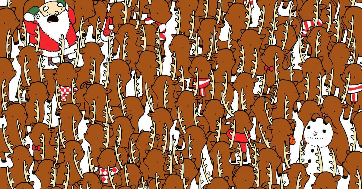 cover-reindeer-1513628279156.jpg