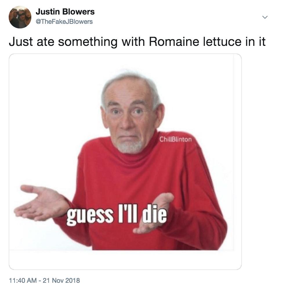 romaine-lettuce4-1542825325560-1542825329785.png