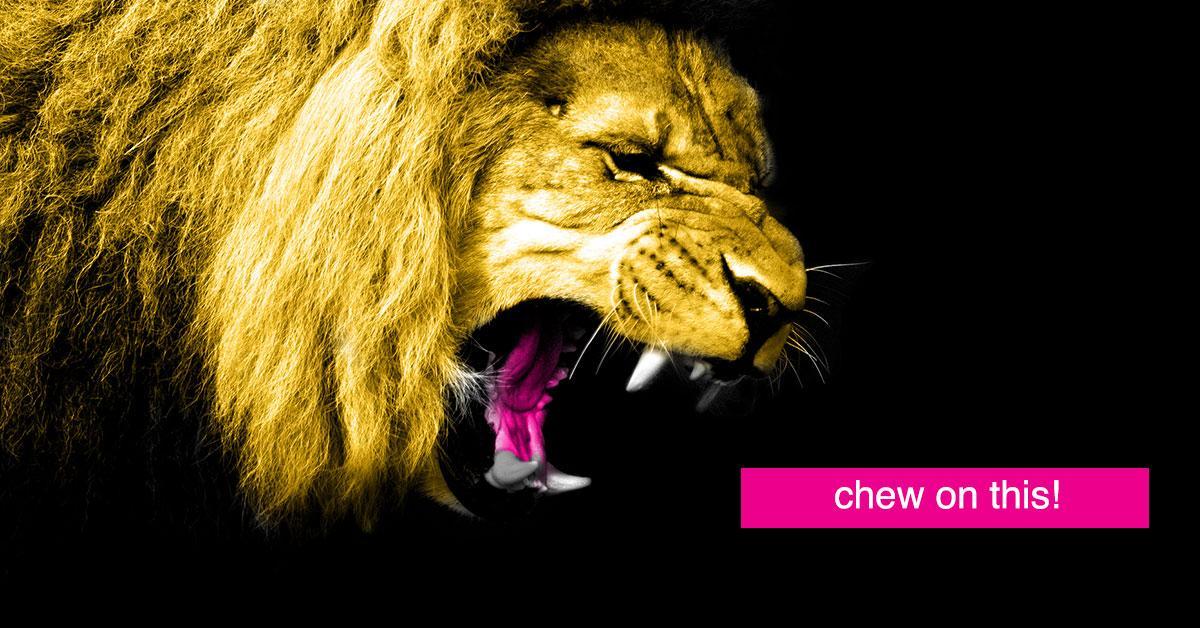 animal-crackers-box-change-1-ALT-1535471668319-1535471670279.jpg
