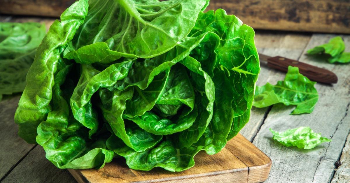 ripe-organic-green-salad-romano-picture-id535910387-1534348887653-1534348889755.jpg