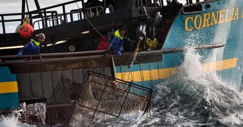 jason-tennessee-king-deadliest-catch-1563915044094.jpg