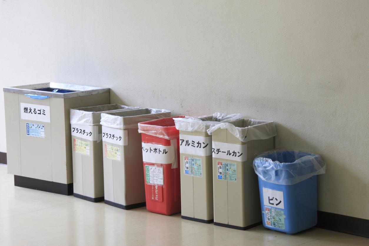 trash2-1539195175776-1539195177868.jpg
