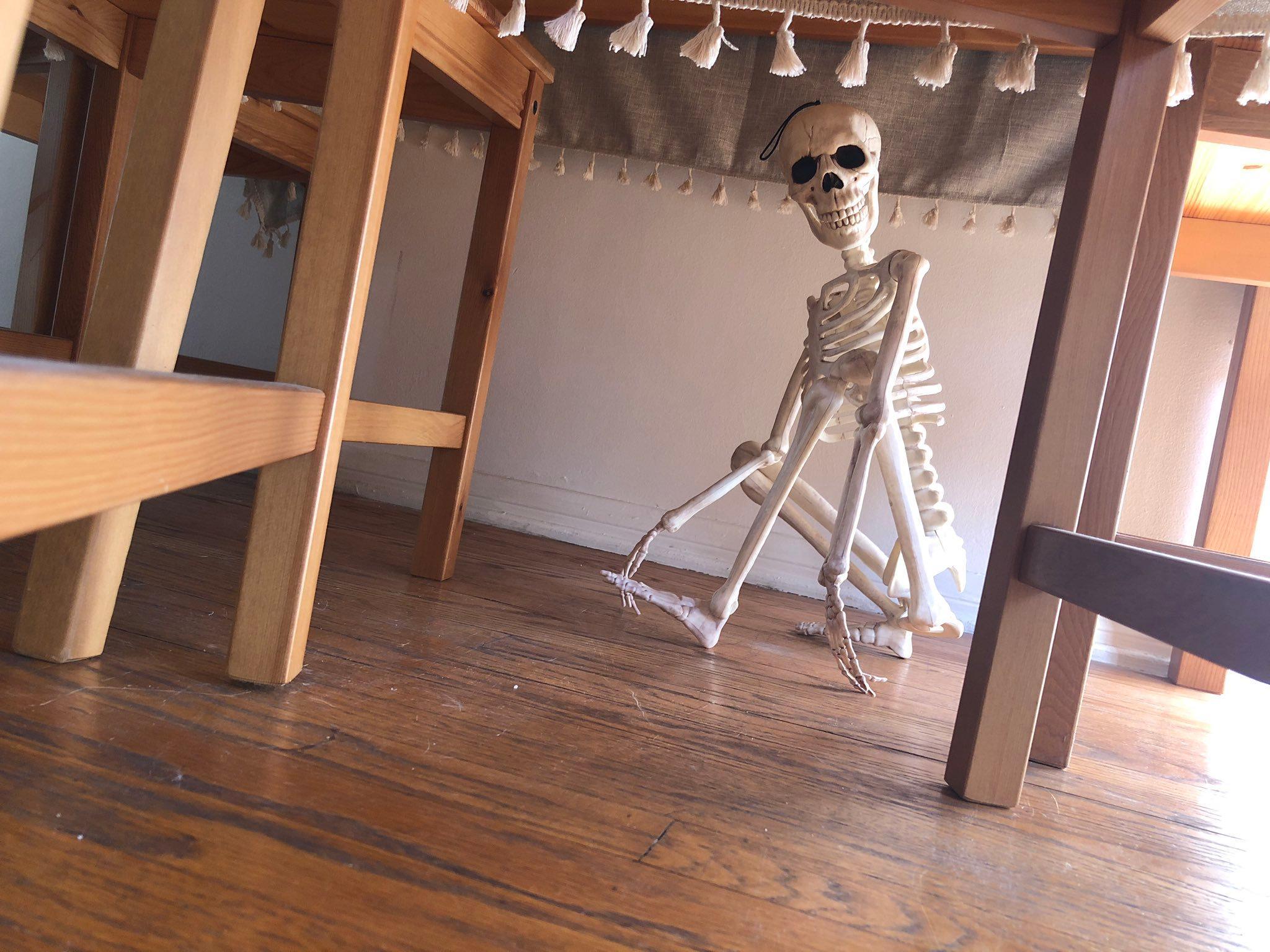 2-skeleton-pet-1570642299673.jpeg