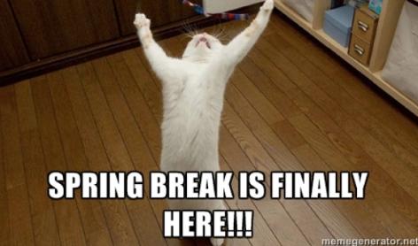 teachers-leaving-for-spring-break-meme-11-1551129227721-1551129229748.png