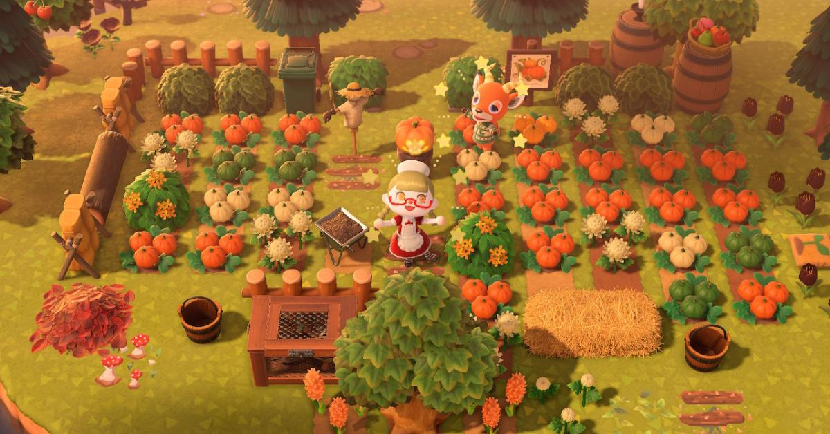 Acnh Pumpkin Patch Ideas You Might Want To Use On Your Island