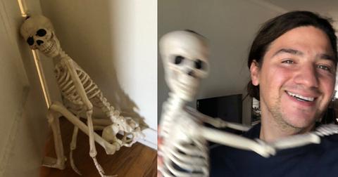 skeleton-pet-1570642100525.jpg