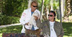 what happened to siegfried and roy tigers