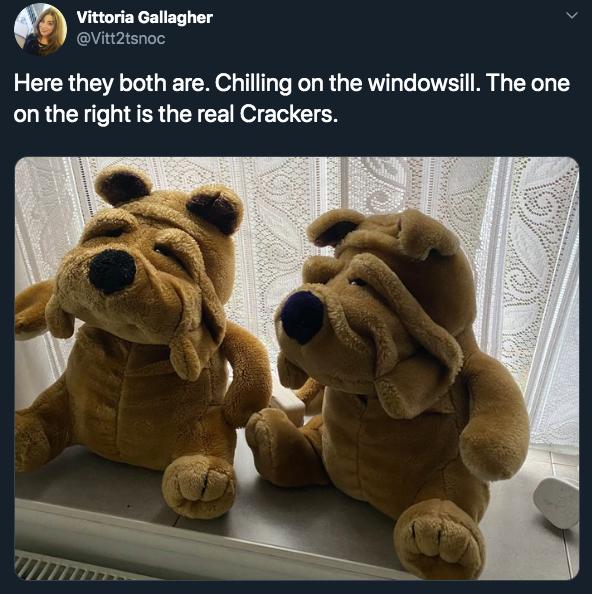 9-crackers-1578599192728.jpg