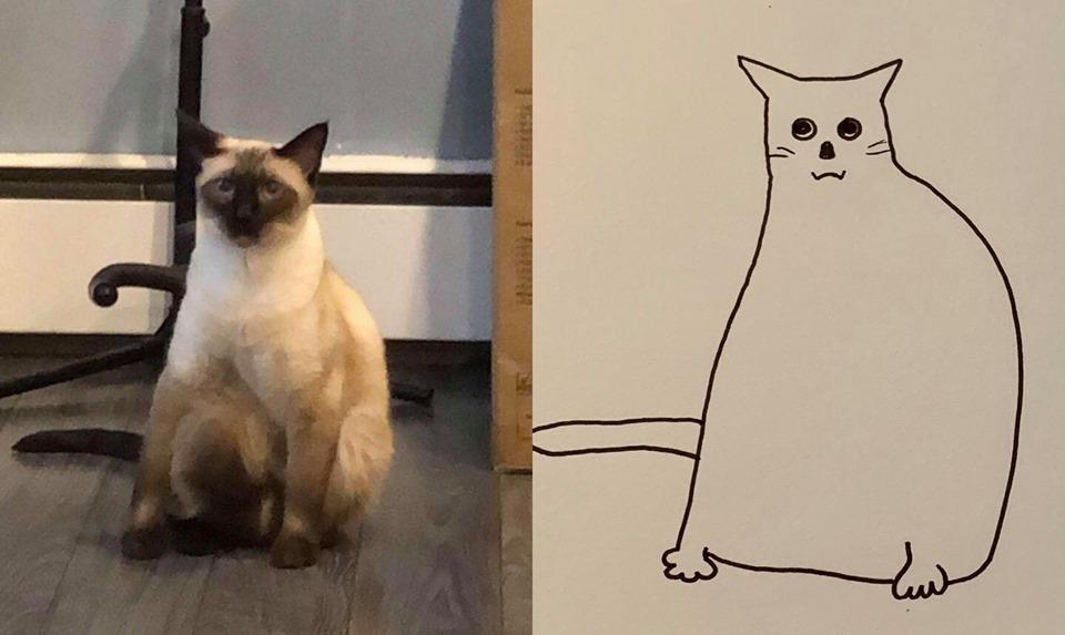 9-flat-dog-doodles-1567790639830.jpg