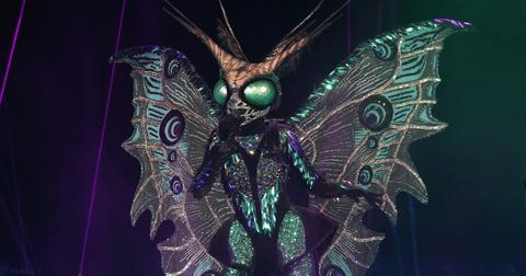 who-is-the-butterfly-masked-singer-clues-2-1574878884494.jpg