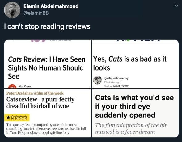 2-cats-reviews-1576772306112.jpg