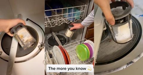 tiktok-dishwasher-filter-1590784943831.jpg