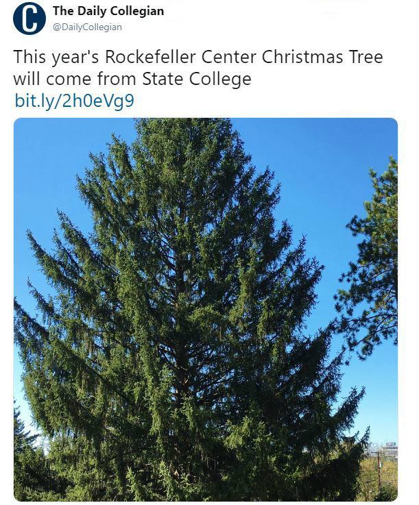 rockefeller-tree-2-1543266442189.jpg