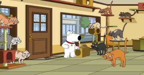 what-happened-to-brian-on-family-guy-2-1573845007897.jpg