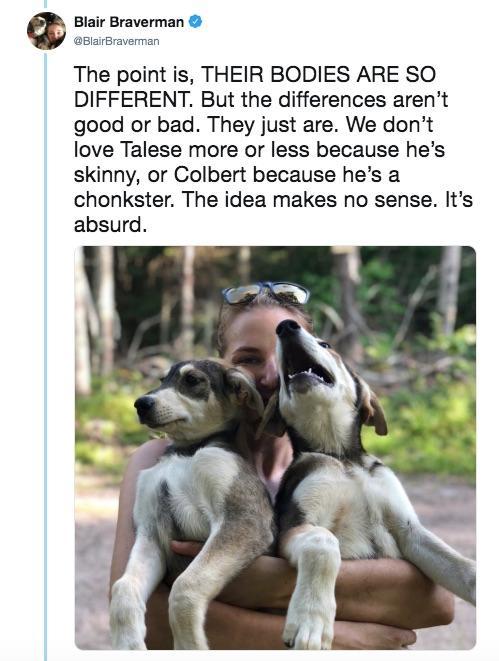 14-sled-dogs-1563217922723.jpg