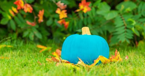 teal-pumpkin-treats-1572287283286.jpg
