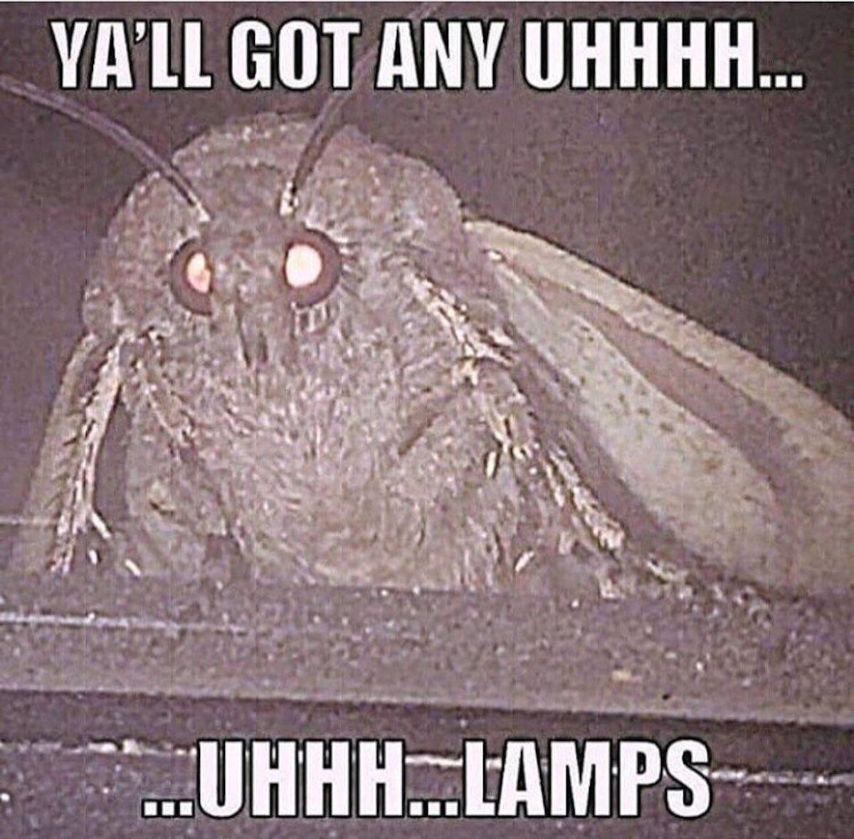 last-minute-halloween-costumes-moth-lamp-1540484036143-1540484037913.jpg