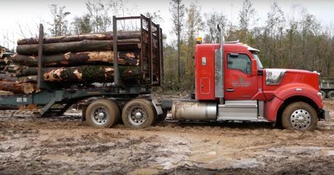 swamp-loggers-bo-1578603099113.jpg