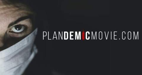 plandemic-cover-1588873298399.jpg