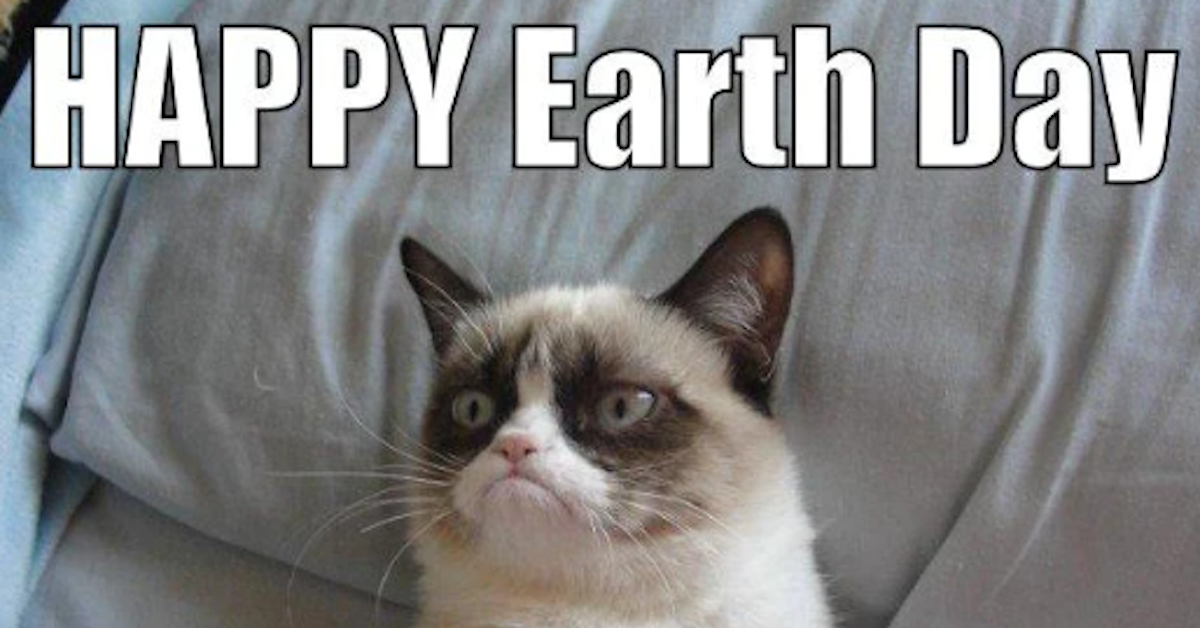 17 Earth Day Memes to Celebrate Mother Nature in All Her Glory