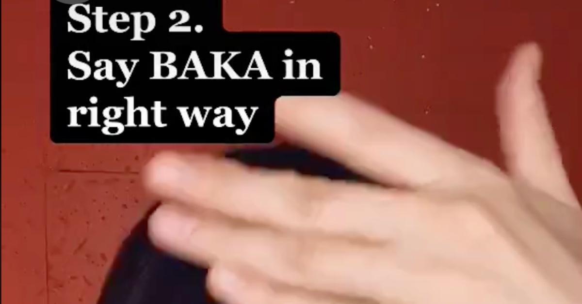 Baka TikTok