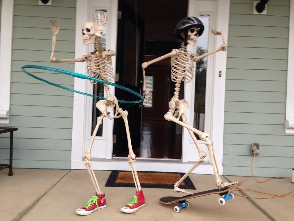 5-skeleton-pet-1570642578606.jpeg