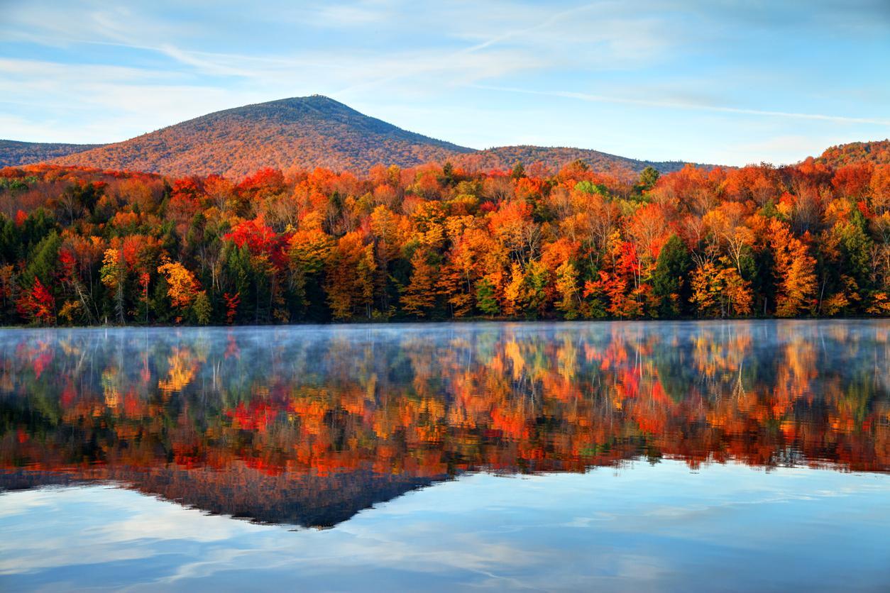 autumn-1572890957666.jpg
