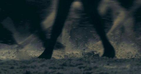 37-season-8-trailer-horses-direwolves-1556628637253.png