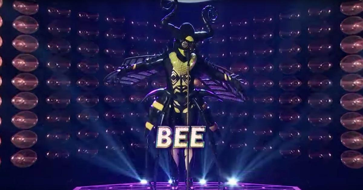 who-is-masked-singer-bee-1547054030452.jpg