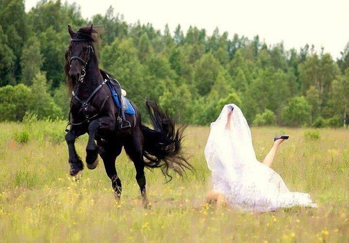 wedding-disaster-3-1569946286972.jpg