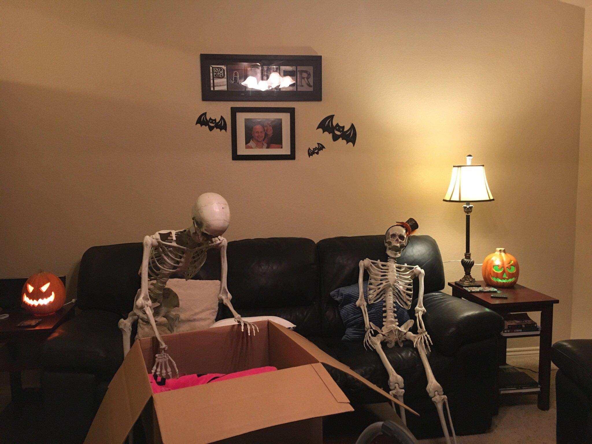 6-skeleton-pet-1570642682495.jpeg