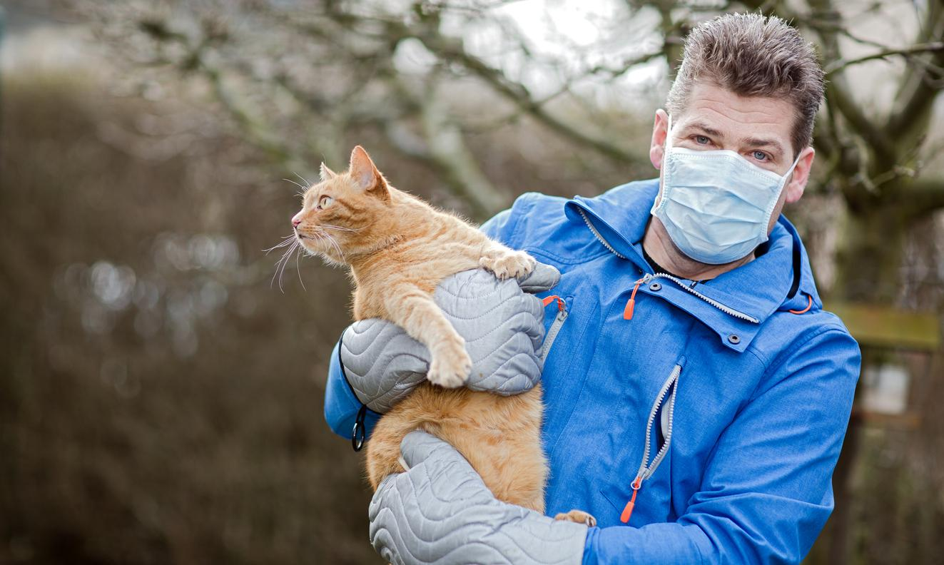 "New ""Vaccine"" Could Stop People Having Allergic Reactions to Cats"